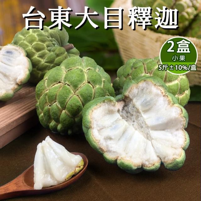 【預購-產地直送】台東香甜好吃大目釋迦5斤含箱重6-9顆(x2盒)