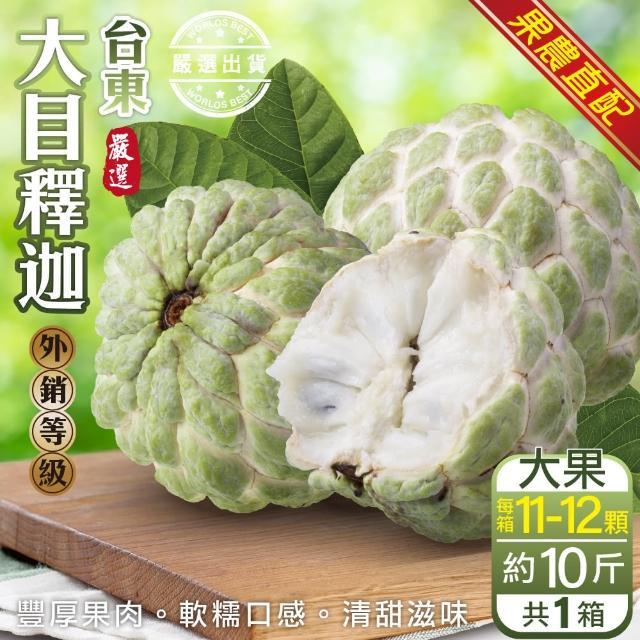 【果農直配x外銷等級】台東大目釋迦(原箱8~11入/約10斤)