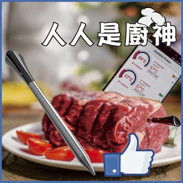【ECPin藍芽溫度計】牛排業餘愛好專用(真無線藍芽溫度計)